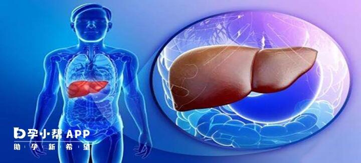 丙肝抗体正常参考值